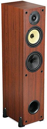 DCM 150-Watt RMS Theater Floorstanding Speaker